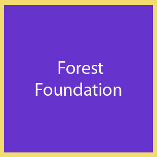 Forest-Foundation
